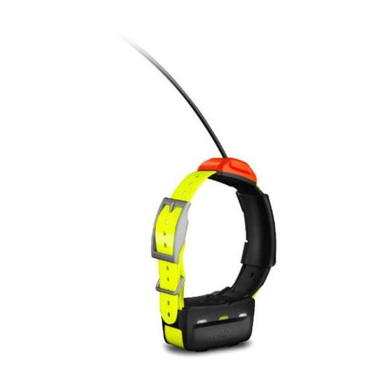 Picture of Garmin T5 Dog Device - 12 interest free installments